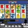 24 beetle casino